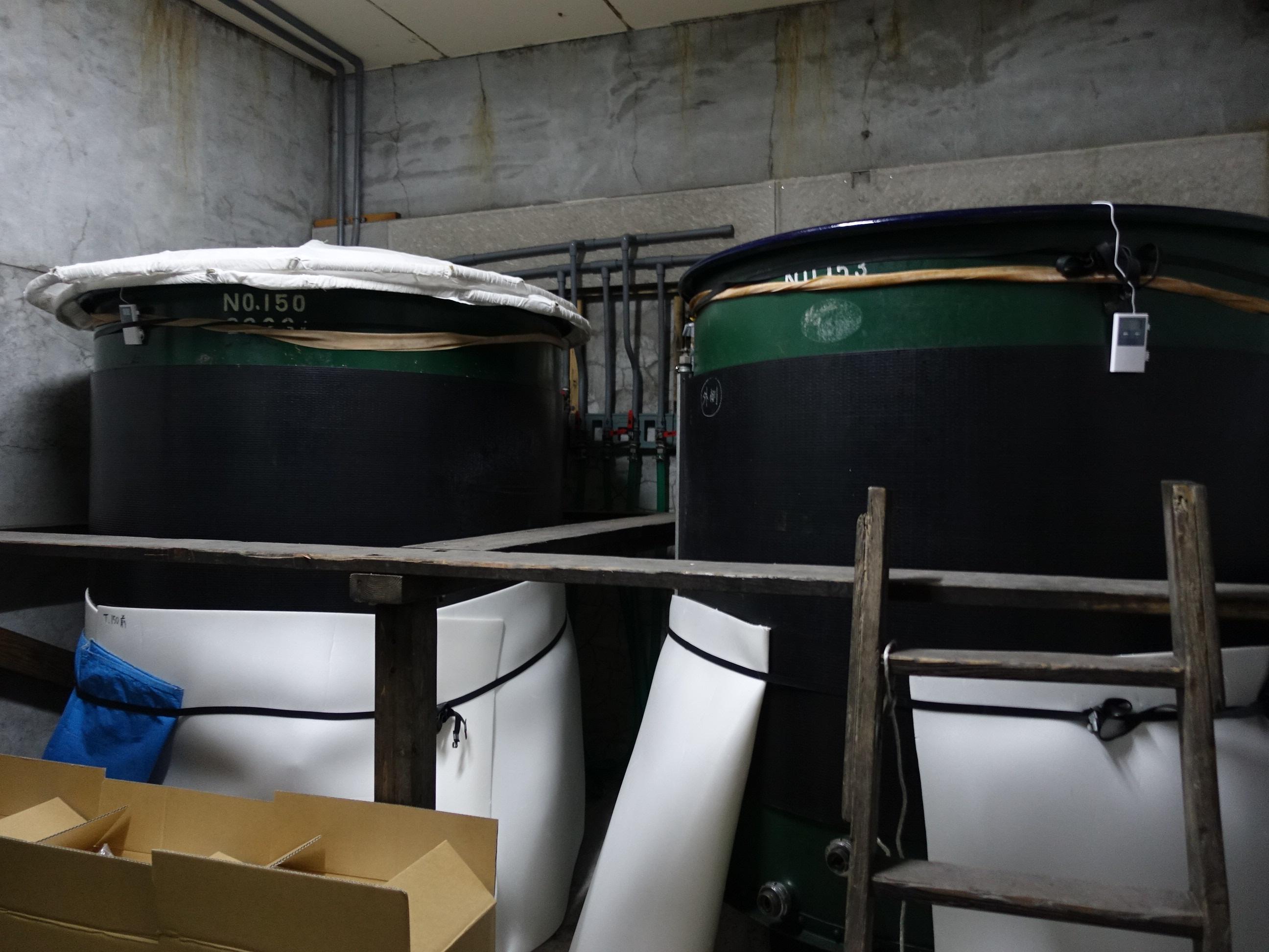 千葉県の日本酒和蔵酒造